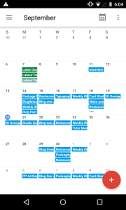 Google Calendar monthly view.