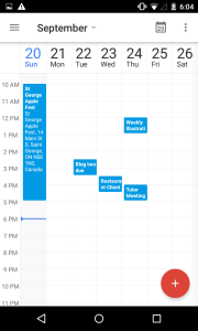 Google Calendar weekly view.
