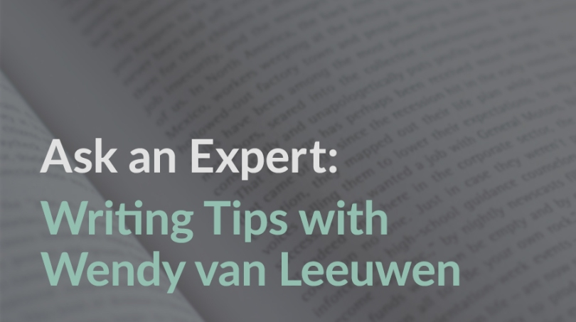 Ask an Expert: Writing Tips with Rebecca van Leeuwen on The Conquering Zero